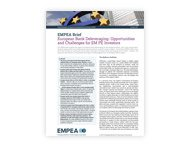 EMPEA Brief: European Bank Deleveraging: Opportunities and Challenges for EM PE Investors