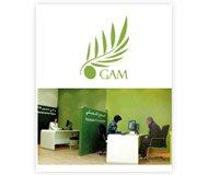 Impact Case Study: Générale Assurance Méditerranéenne (GAM)