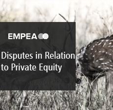 Disputes in Relation to Private Equity